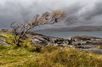 On Loch Na Keal, Isle of Mull