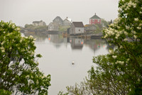 Stonehurst in Morning Fog